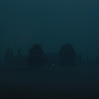 alberi_blu4