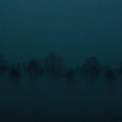 alberi_blu8