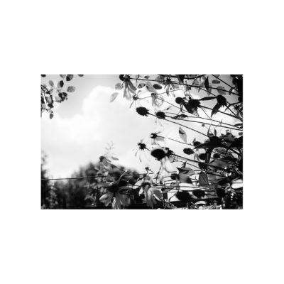 04_IMG_4967